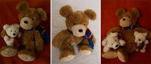 Benny Energiebären